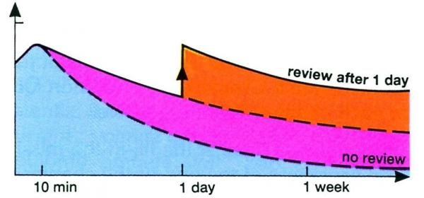 3rd Graph